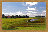 Zeeland Countryside (04), Wetlands 1 by corngrowth, photography->landscape gallery