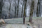 Fence by twinkel, photography->landscape gallery