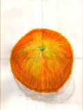 Orange by Tochi, Illustrations->Traditional gallery