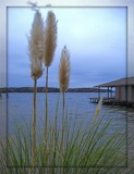 Lake Gaston 3 by ccmerino, Photography->Shorelines gallery