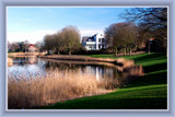 Middelburg (46), Outskirts of Town by corngrowth, Photography->Landscape gallery