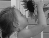 Sunflower Girl by Con_, Photography->People gallery