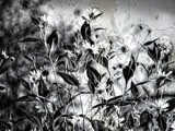 Wildflower Grunge by bfrank, contests->b/w challenge gallery