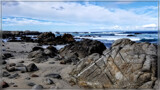 Pacific Grove III by Flmngseabass, photography->shorelines gallery