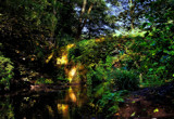 Ivy Covered Crossing by biffobear, photography->bridges gallery