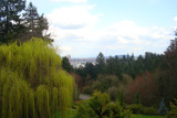 Portland, OR from Japanese Garden by Eugene, Photography->Landscape gallery