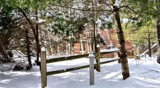 Winter at Defries Garden #2 by tigger3, photography->gardens gallery