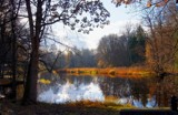 A golden day in autumn 12 by Inkeri, photography->shorelines gallery