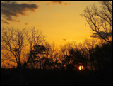 Sunset 2 by ccmerino, Photography->Landscape gallery