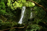 Deep in the forest . . . . . . . . by LynEve, photography->waterfalls gallery