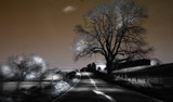 Infra Road by biffobear, Photography->Manipulation gallery