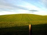 Field2 by pom1, photography->landscape gallery