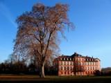 Biebricher Schloss by BernieSpeed, photography->castles/ruins gallery