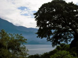 The Tree of Atitlan  by chris_f2005, photography->landscape gallery