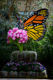 Monarch Lego Sculpture by Pistos, photography->sculpture gallery