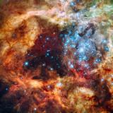 R136: 30 Doradus Nebula by philcUK, space gallery