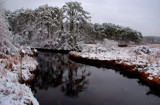the first snow by solita17, Photography->Landscape gallery