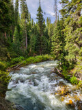 South Fork of the West Fork of the Gallatin River (2) by Pistos, photography->nature gallery