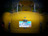 I Captured a Cobra! by kidder, Photography->Cars gallery
