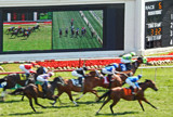 Arlington Racecourse 11 - New Technology by trixxie17, photography->action or motion gallery