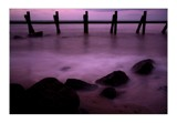 pink 2 by JQ, photography->shorelines gallery