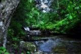 Hidden Beck by biffobear, Photography->Landscape gallery