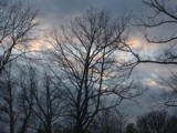 Skies of Winter by Lady_Rhea_, Photography->Nature gallery