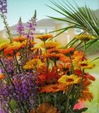 Flowers by biffobear, photography->flowers gallery