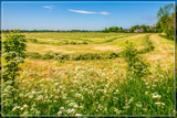 Ready To Hay by corngrowth, photography->landscape gallery