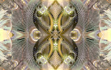 The Butterfly Believer by Flmngseabass, abstract gallery