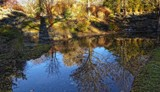 Winter In The Park - Shadows & Reflections by LynEve, photography->gardens gallery