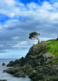 The Sentinel of the Rock by tanimara, photography->shorelines gallery