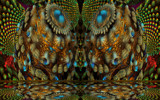 Life Beneath The Waves by casechaser, abstract->fractal gallery