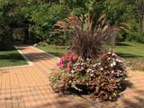 Defries Garden_Autumn Display by tigger3, photography->gardens gallery