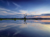 Still Standing Tall by Zyrogerg, Photography->Sunset/Rise gallery