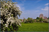 Springtime Near Veere 1 by corngrowth, photography->landscape gallery