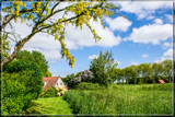 Rural Spring 3 by corngrowth, photography->landscape gallery