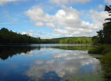 Summer Reflections by jayrod36, Photography->Landscape gallery