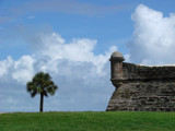 Palm at Castillo de San Marcos by Ronnie_R, Photography->Architecture gallery