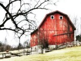 Old Red Barn by Morning, photography->general gallery