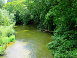 Tembi River by koca, photography->landscape gallery