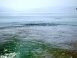 The Drim River by koca, photography->shorelines gallery