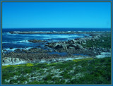 Shoreline. by SusanVenter, Photography->Shorelines gallery
