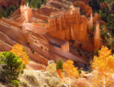 Bryce Canyon Gold by nmsmith, photography->landscape gallery