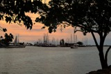 Ala Wai Silhouettes by LynEve, photography->shorelines gallery