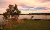 Evening at the Lagoon by LynEve, photography->general gallery