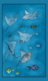 Some Sea Creatures by bfrank, illustrations gallery