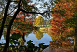 Autumn Colors 5 by Ramad, photography->landscape gallery