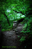 West Burton Steps by biffobear, photography->landscape gallery