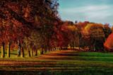 Firewall by biffobear, photography->landscape gallery